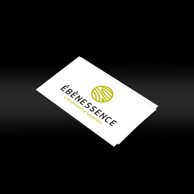Creative Altitude - Agence Communication - Savoie - site-internet - logo - web - print - cartes de visite Ebènessence